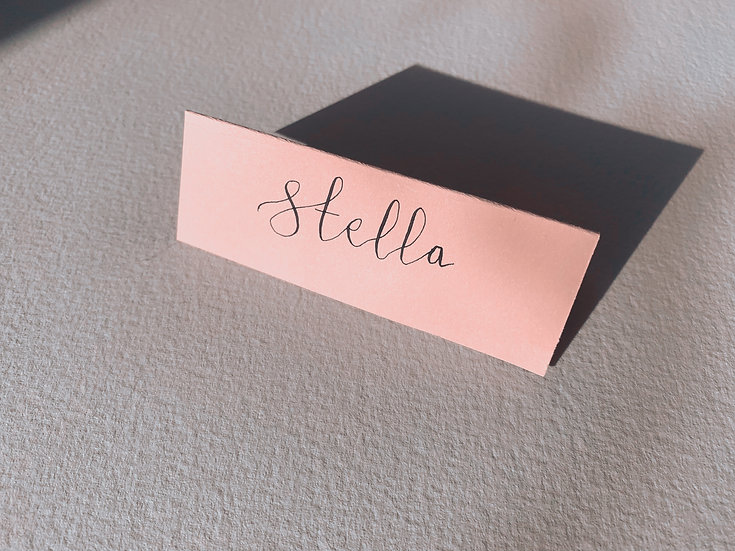 Hand Written Calligraphy  Place Name Card Blush Flat or Tented Place cards Place Name Cards White Classic Relaxed Modern Rust