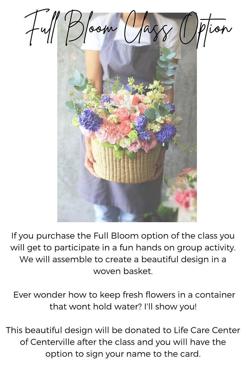 flower photos for workshop 4.jpg
