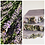 Thumbnail: Lavender Gift Box