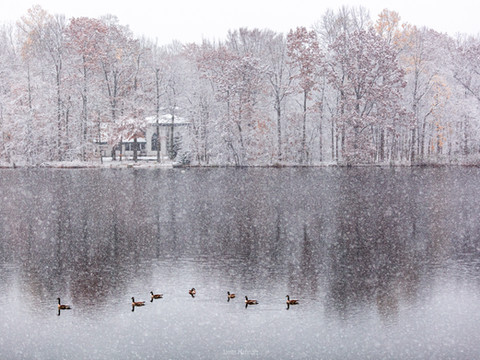 Snowy autumn lake