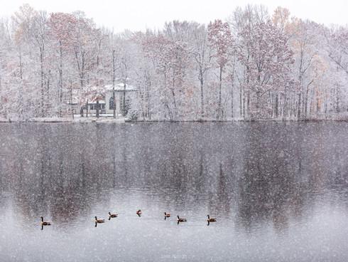 Snowy autumn lake
