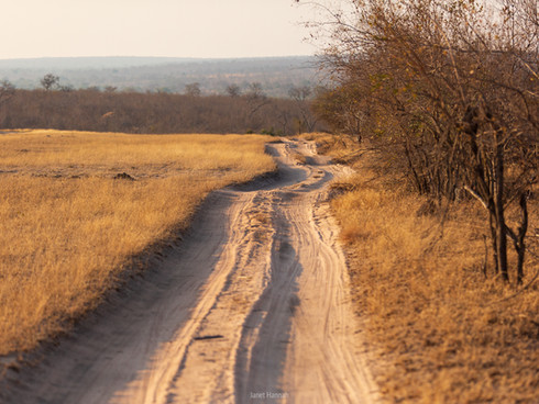 On the way to our camp, Londolozi Private Game Reserve