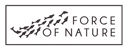 FoN Logo.png