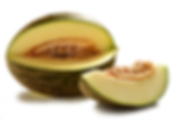 melon sapo.png