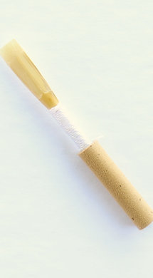 Protege Oboe Reed