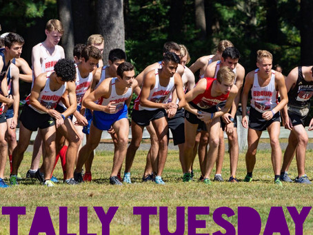 Tally Tuesday 11.4.2019