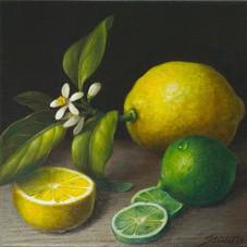 Zitrone und Limitte