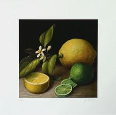 Zitrone/Limette