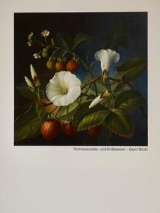 Erdbeere/Trichterwinde