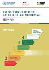 3_Risk Based Strategic Plan-2020_english