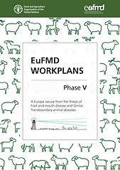 FAST_Workplan.jpg