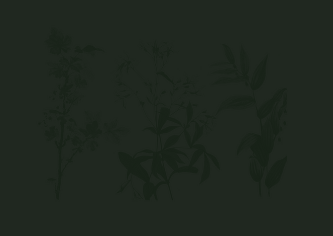 Green Flowers Pattern.png