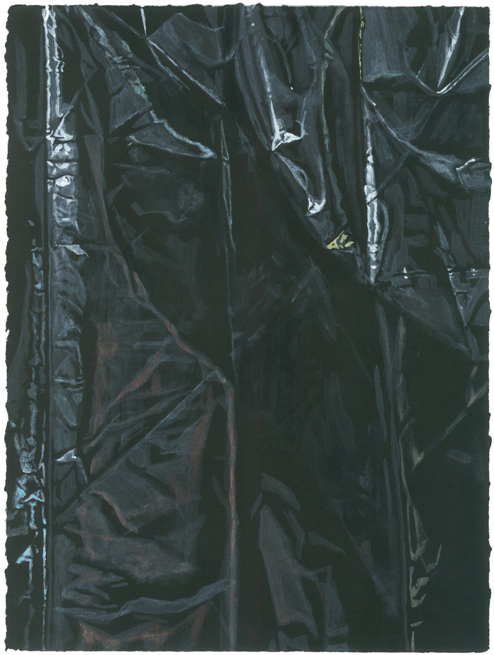 Untitled 1 (black), 2013