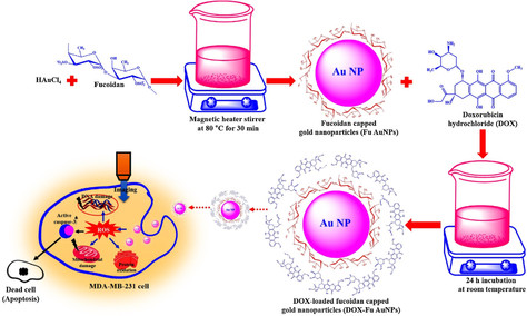 Research Summary: Doxorubicin-loaded fucoidan capped gold nanoparticles for drugdelivery and photoac
