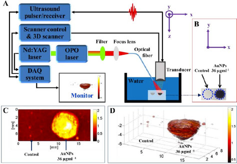 Research Summary:Astaxanthin-Reduced Gold Nanoparticles for Photoacoustic  Imaging of Breast Cancer