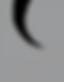 CAA_Logo_Silver-01.png