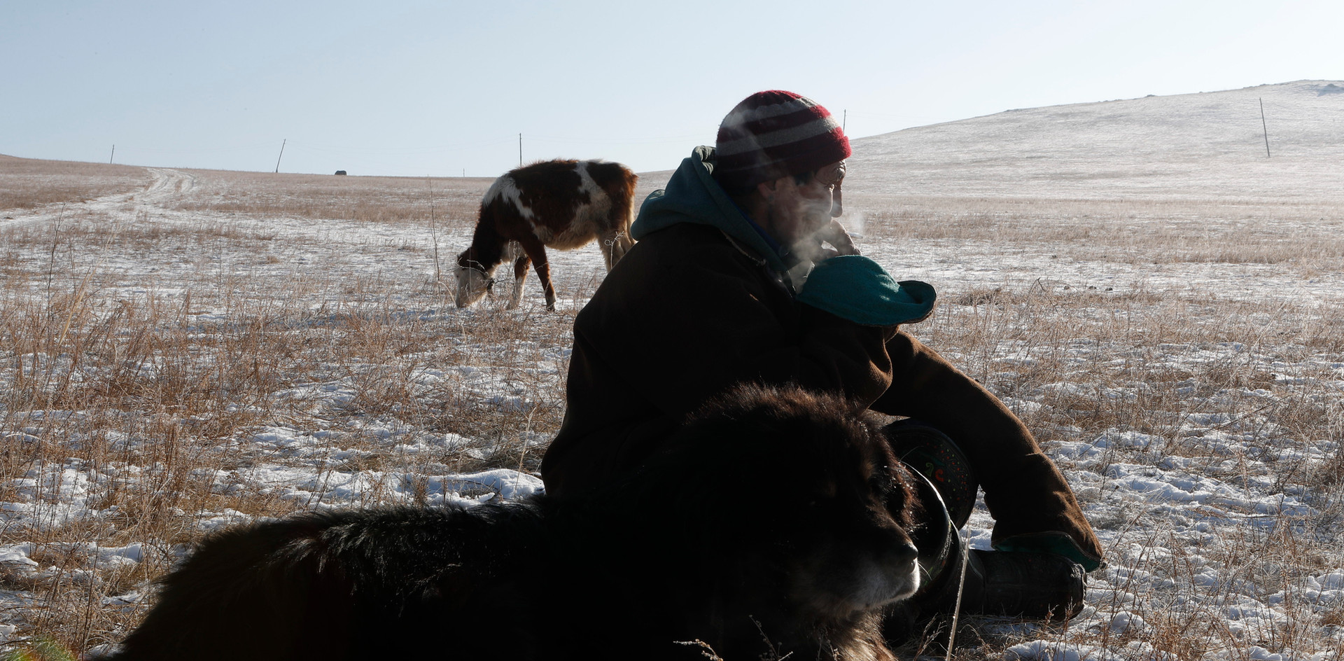Tsogbayar Khorol, 49 watches his livestock with his herding dog, Arslan, 16, by his side in the Bornuur province, Mongolia.