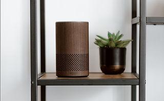 Smart Speaker Nature.jpg