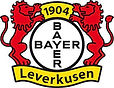 bayer 04.jpg