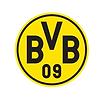 BVB quadratisch.png