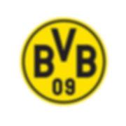 BVB Logo_weiss.jpg