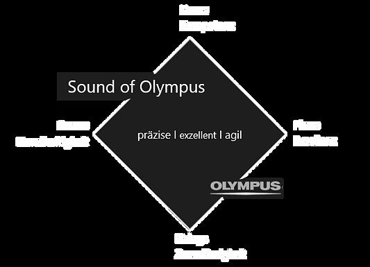 Olympus Medical_Klangarchitektur.png