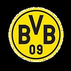 BVB quadratisch_edited.png