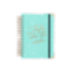 agenda-diaria-2020-jefa-mint-mediana-nue