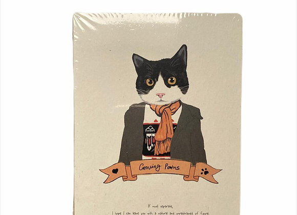 Cuaderno Gato 1
