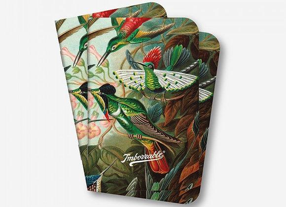 Pack 3 Libretas Pájaros