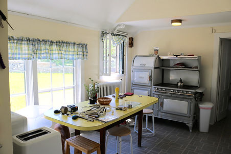 kitchen before Elm.jpg