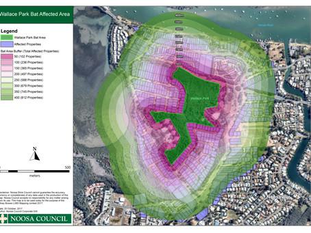 Noosa's Bat Map