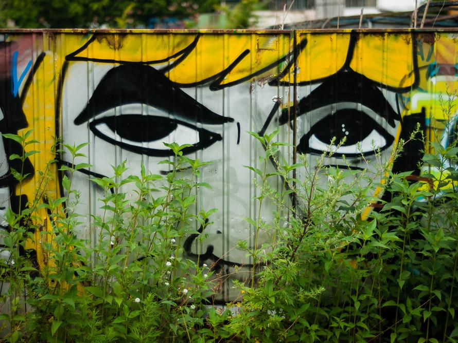 Bunt: Graffiti 5, Juli 2015