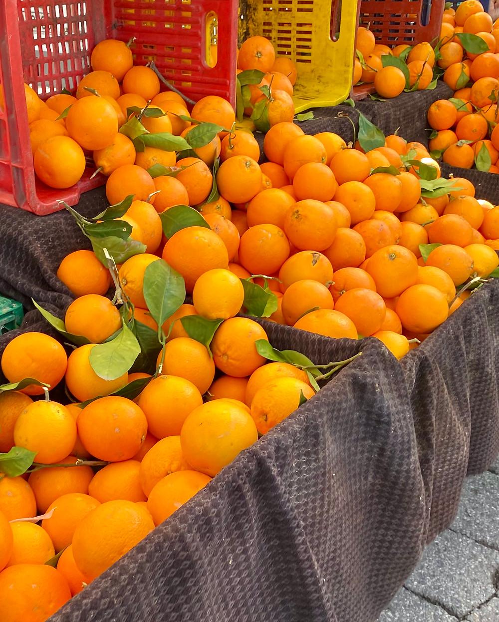 sicily-blood-oranges-varieties