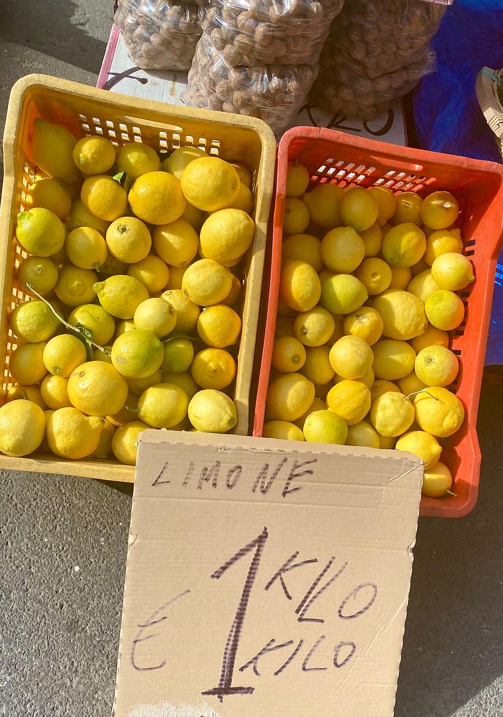 sicily-lemons-femminello-limone