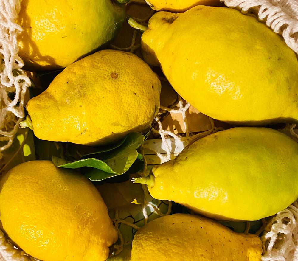 sicily-lemons-interdonato