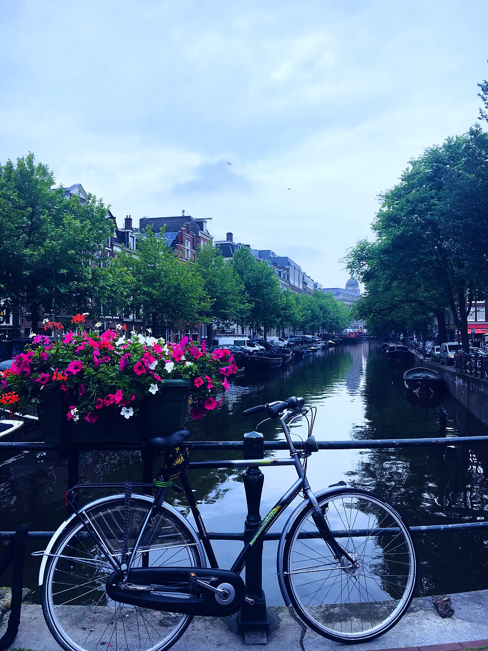 day-trips-from-amsterdam