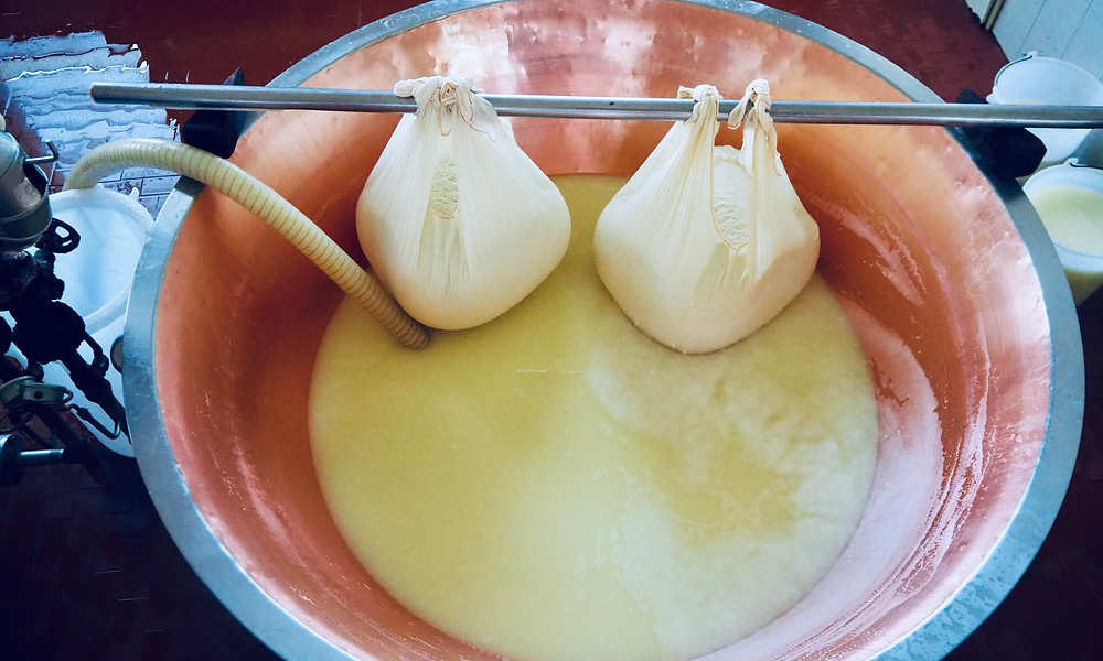 parma-food-tours-cheese-farm-6