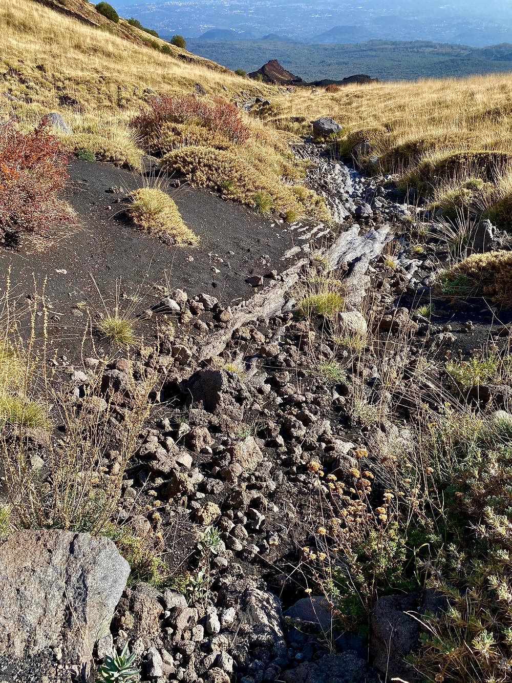 mount-etna-hikes-schiena-dell-asino-12