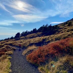 Mount Etna Hikes | Schiena dell'Asino