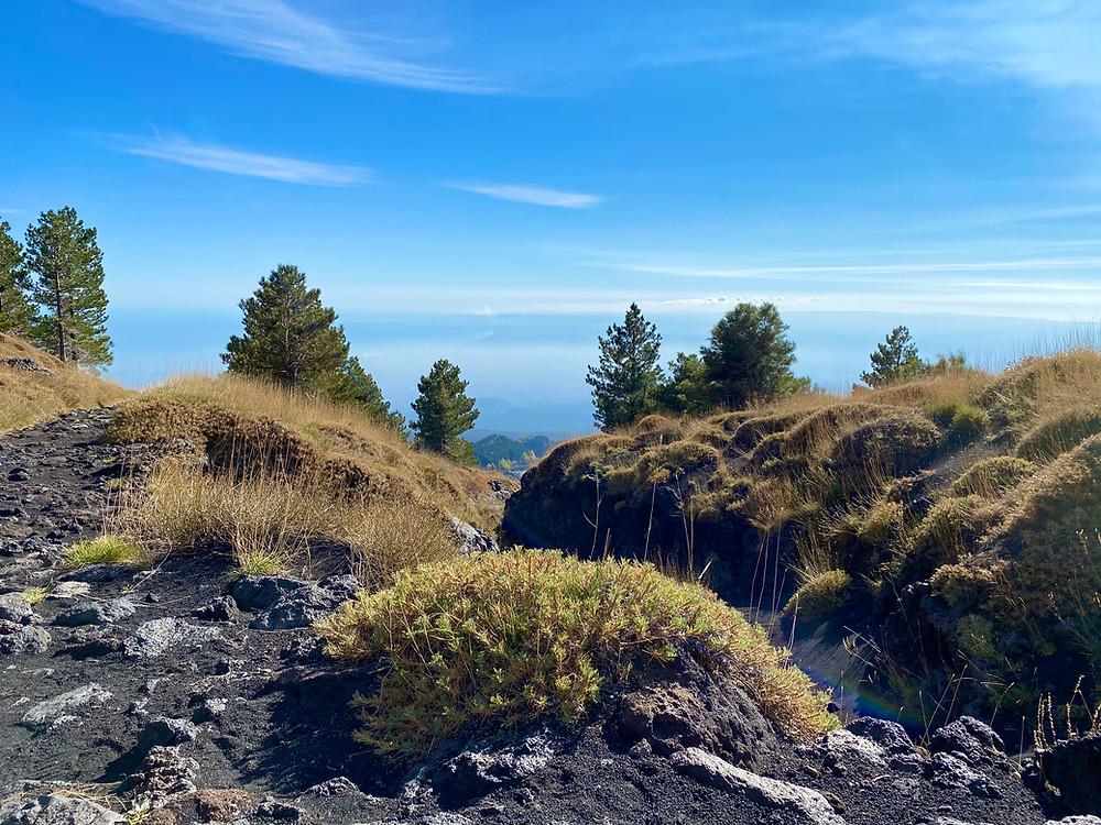 mount-etna-hikes-schiena-dell-asino-8