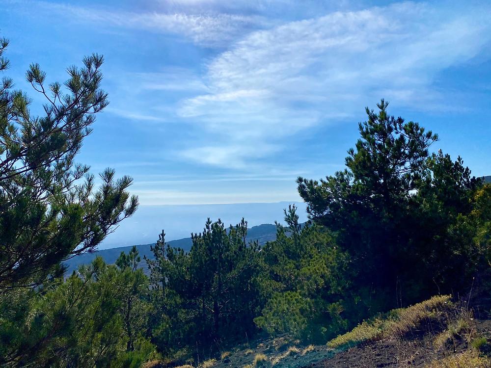 mount-etna-hikes-schiena-dell-asino-7