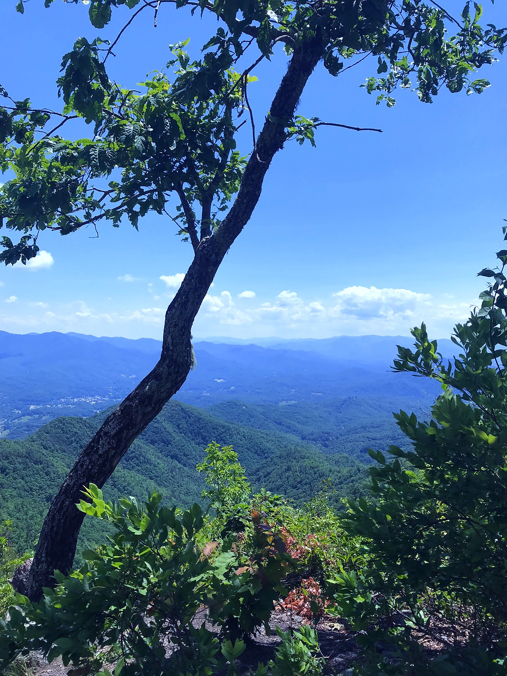 tennessee-whiskey-moonshine-smoky-mountains