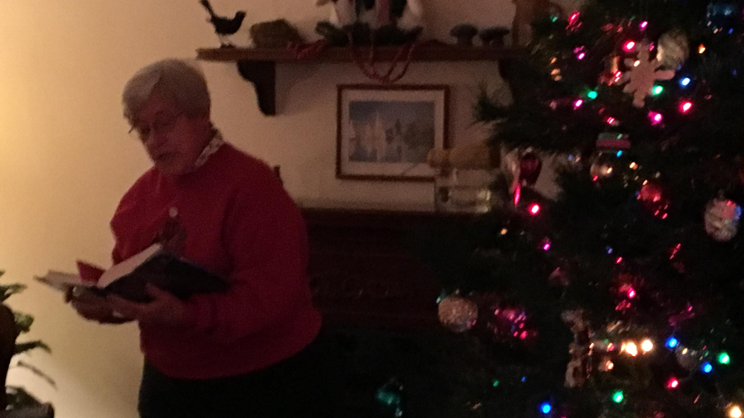 Community Room Christmas Tree