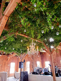 Boone Hall Greenery Ceiling