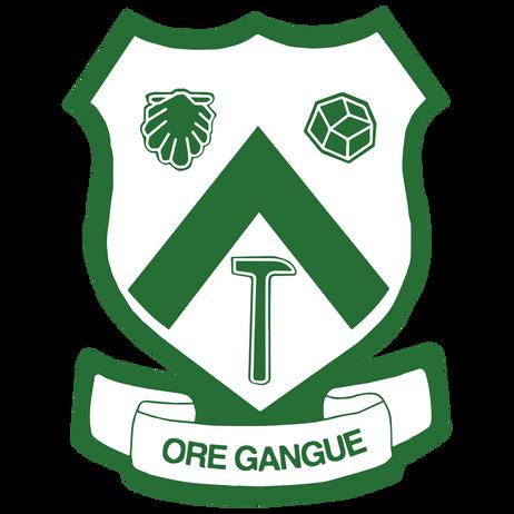 ANNUAL REPORT FOR THE ORE GANGUE ALUMNI BURSARY FUND