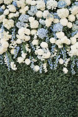 Boxwood flowers