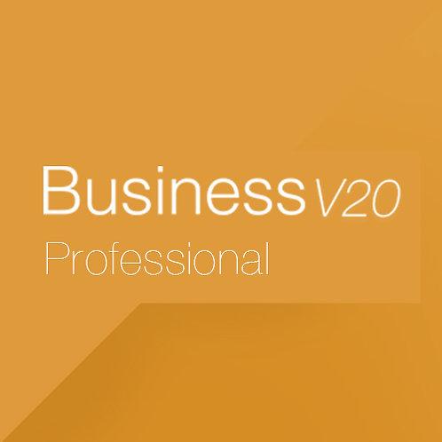 Business V20 Professional