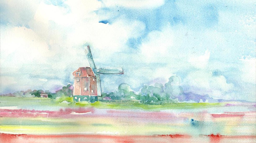 Windmill in Tulip Fields