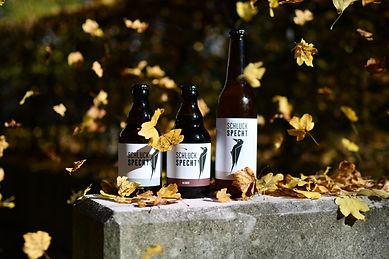 SCHLUCKSPECHT Bier Luzern.jpg